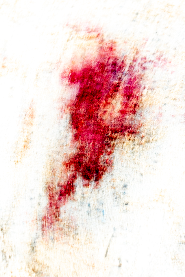 Abstract photography of seal afterbirth