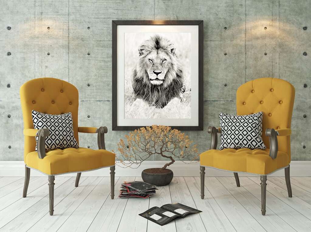 Fine art print of a lion.